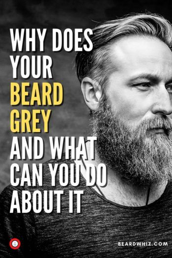 dye for grey beards